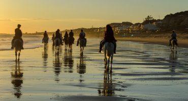 Ibiza – monipuolinen kohde