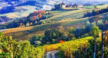 Nauti sadonkorjuusta Italiassa